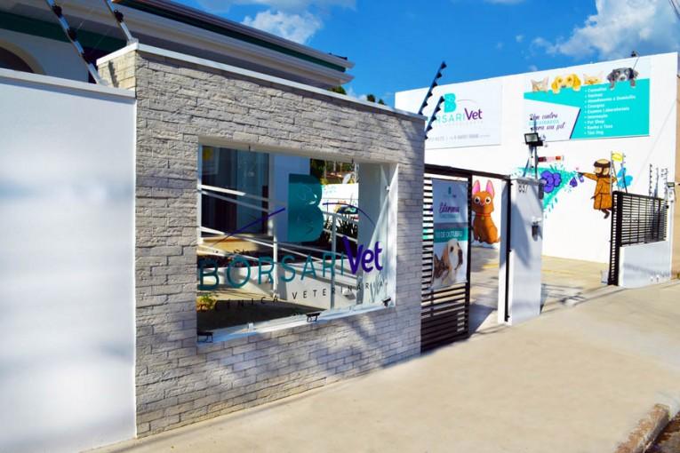 Inaugura na cidade clínica veterinária Borsarivet