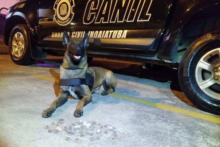 Guarda Civil apreende 159 porções de drogas